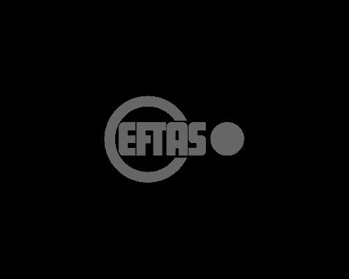eftas-webdesign-geniacs-werbeagentur