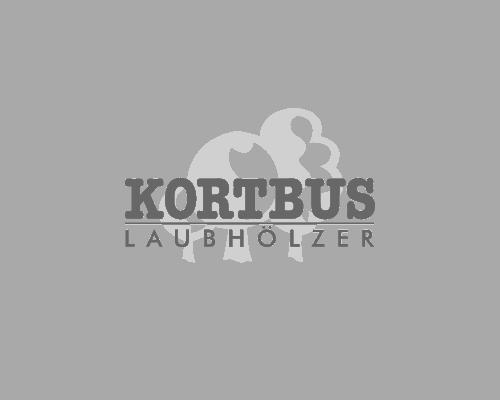 kortbus-webdesign-geniacs-werbeagentur-muenster-1