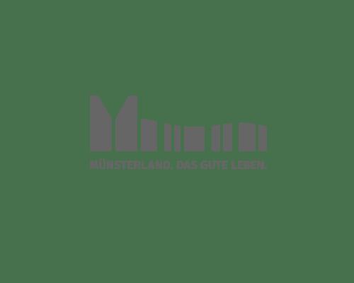 muensterland-webdesign-geniacs-werbeagentur