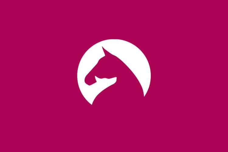 Logodesign für eine Tierosteopathin aus Münster